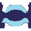 NZ Lighter Logo